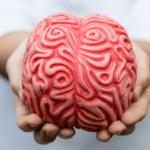 Alzheimer: impariamo a riconoscere i sintomi per agire subito