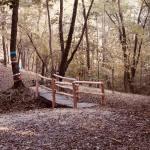 Fiabosco, il parco dove le fiabe prendono vita