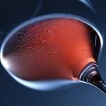 La festa del vino di Castelnuovo Don Bosco