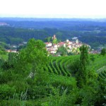 Le Feste d'San Roch a Castelnuovo Don Bosco