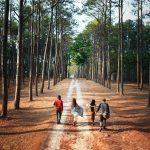 Sentieri di riflessione: la vacanza tra ambiente e arte