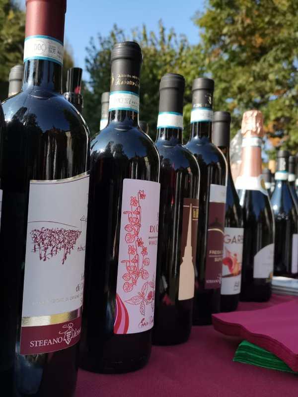 """A Cinzano """"Assaggi di Collina"""" con cultura, benessere e i vini del territorio"""