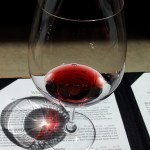 Pinot Noir in Los Olivos, CA
