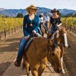 Vino Vaqueros Horseback Riding in Los Olivos, CA