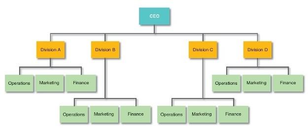 Organizaci n divisional for Organizacion de un vivero