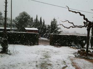 Como nieva