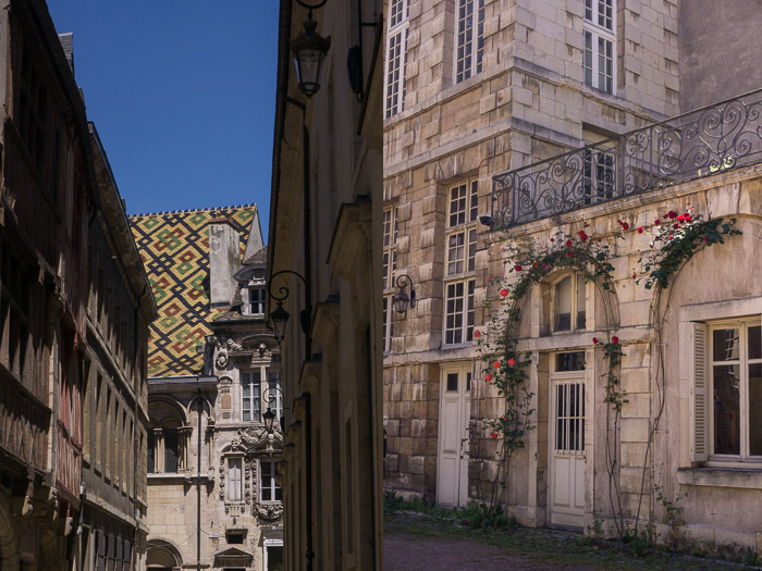 Dyptic of Dijon France | Lost Not Found | French Road Trip