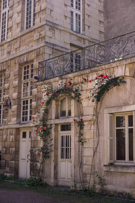 Old building with rose vines growing in Dijon France | Lost Not Found | French Road Trip