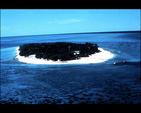 041 - Heron Island (Great Barrier Reef of Australia), Dr Jay M Pasachoff