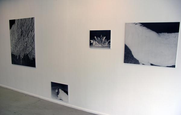 Lydia Weijers - Zonder titels