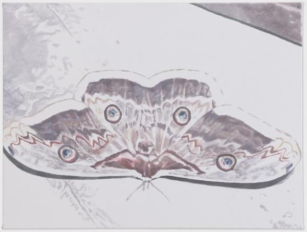 Butterfly - 121x158cm Olieverf op canvas