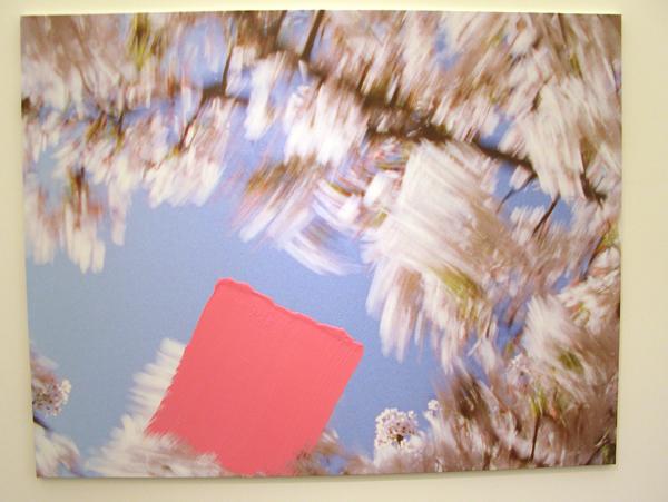 Marijke van Warmerdam - Blossom, Sweep