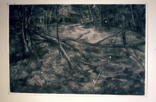 Sven Verhaeghe - Sumpf Feuer - 150x100cm Houtskool op papier