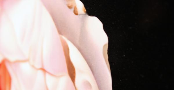 Lieve Hemel - Jeroen Paulussen (detail)