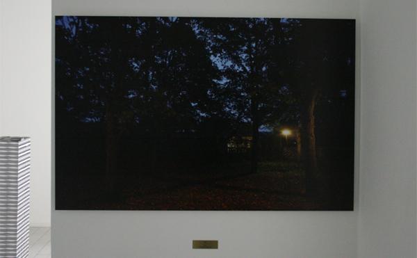 Rumiko Hagiwara - X - 105x68cm Inkjet print