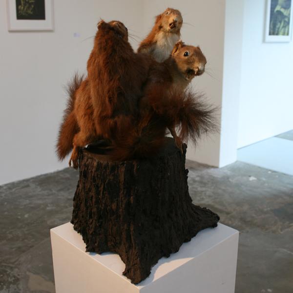 Joncquil - Treetrunkrumble - 40x23x31cm Keramiek en taxedermie