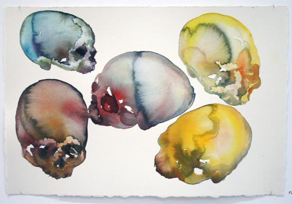 Paul van Dongen - Schedels - 38x56cm Aquarel