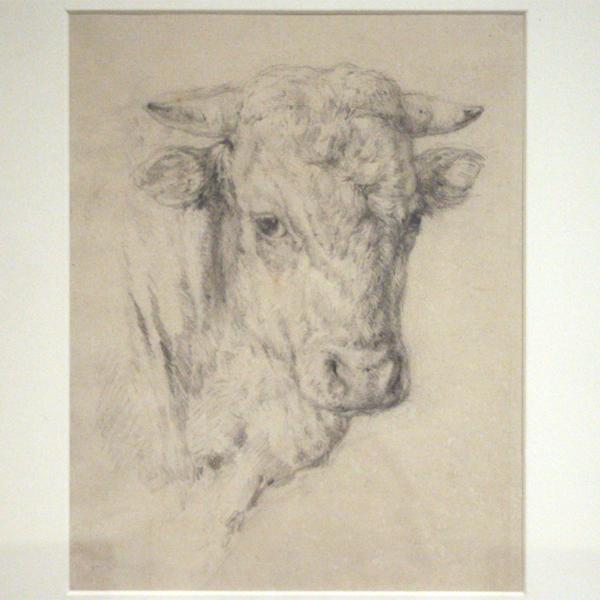 Willem Maris - Koeienkop - Potlood op papier