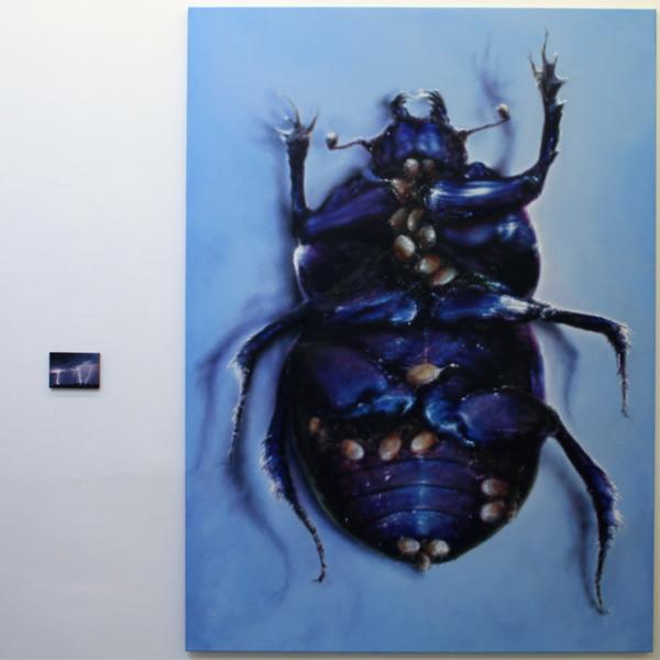 Anya Janssen - Dungbeetle - 220x160cm