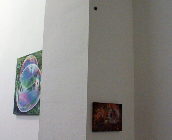 Anya Janssen installatie detail