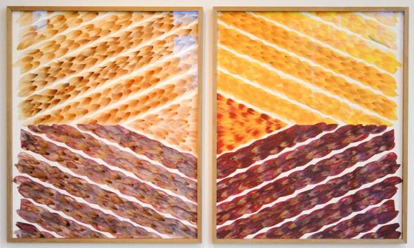 Jennifer Tee - Tampan - Tweeluik, ieder 65x54cm C-print en collage van tulpenbladen
