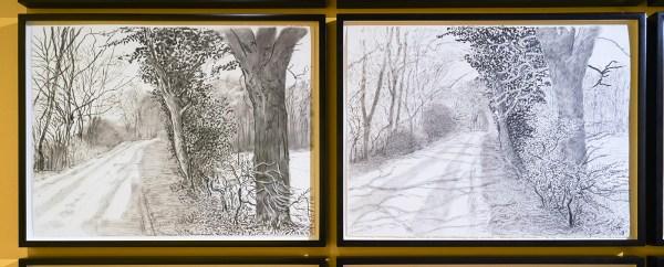 David Hockney - Het aanbreken van de lente in 2013 - Houtskool op 25 vellen papier (detail)