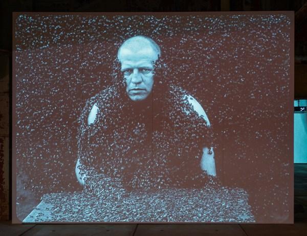 Jeroen Eisinga - Springtime - 19,05minten 35mm naar 2K, zwartwit zonder geluid