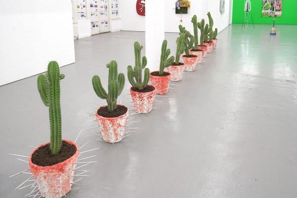 Daniel van Straalen - Sprit Plant