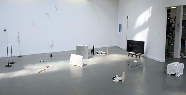 Anna Maria Luczak - Image Preference, Untitled - 15,22minuten Multimedia installatie