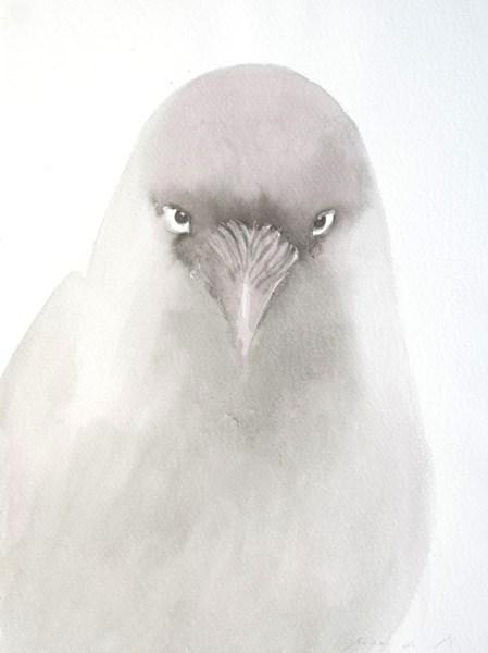 Anne van As - Burka Bird - 30x40cm Inkt op papier, 2015