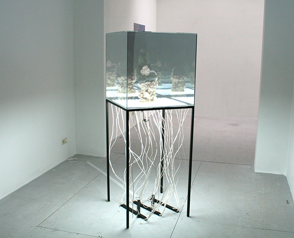 Chirstopher Kulendran Thomas - From the onging work (www,when-patitudes-pecome-form,lk) - Spiegelglas, TL-licht, staal, foam en 'Universal Power' van Jegan Weerasinghe
