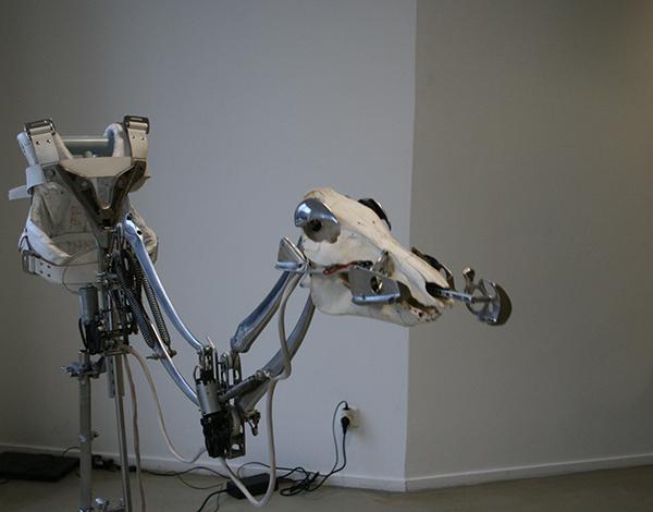 Christiaan Zwanikken - Boar Suit Exoskeletal - 40x200x170cm