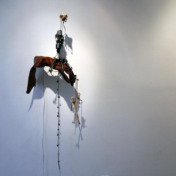 Christiaan Zwanikken - Mister Houdin, Don't Forget Your Bird - 50x90x40cm Vogelschedel, kenetica, leer en electronica