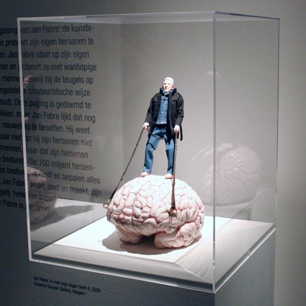Dick Swaab - Jan Fabre - Ik men mijn eigen brein II