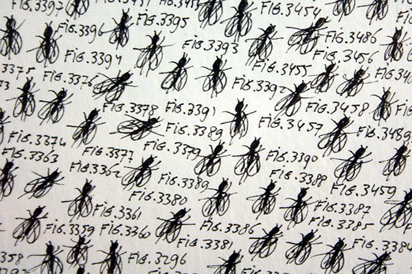 Eduard Bezembinder - 6666 numbered (Spanish) Flies - 112x75cm Fineliner op papier (detail)
