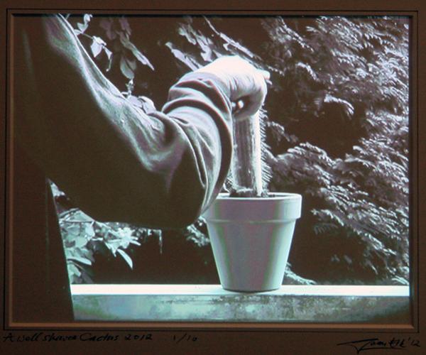 Ger van Elk - The Well-Shaven Cactus - 24x30cm Projectie op passepartout