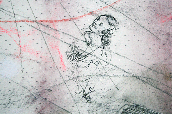 Hans de Wit - Toad - Pastel en houtskool op Saunders Waterford papier (detail)