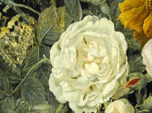 Henri de Fromantiou - Bloemstilleven met passiebloem - Olieverf op doek, 1665 (detail)