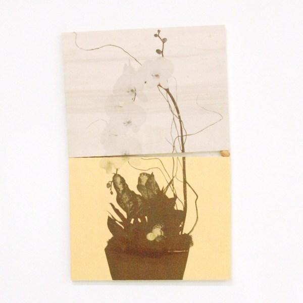 Huub Vlemmings - Orchid - 50x32cm Multiplex, olieverf, inktjetprint op zijde en pistachio