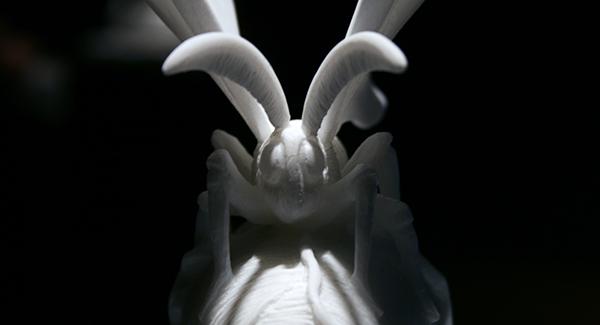Jan Fabre - Gisant (The Silk Spun in the Brain) - 25x19x15cm Marmer (detail)