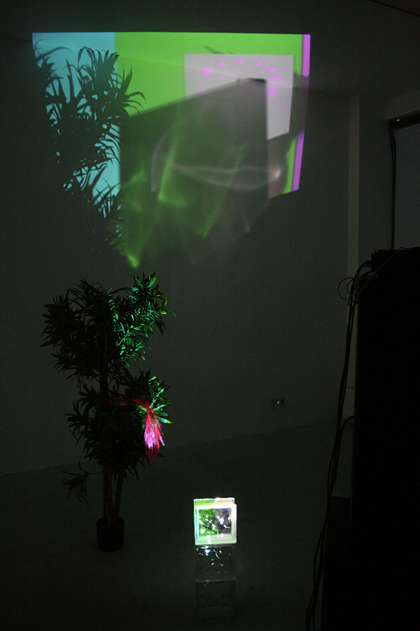 Joey Holder - Eating a Tube Anemone - Projectie, glazen steen, nepplant en hairextension