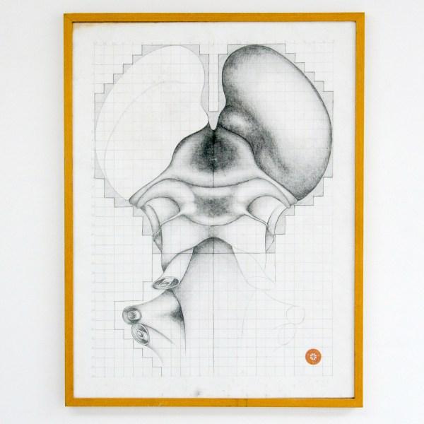 Justin Prang - Zonder Titel - 80x60cm Grafiet op papier