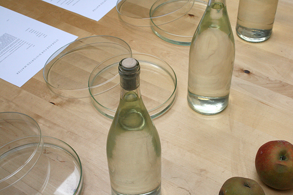 Loek Grootjans - Storage for Distorted Matter - Diverse waaronder water uit de put bij het Van Goghhuis en aarde uit de tuin_2