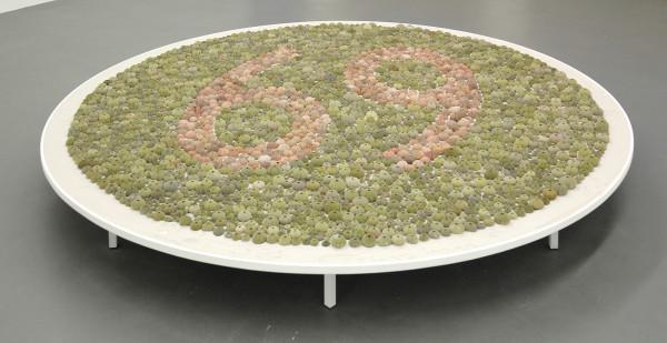 MAP Office - Island for Colorblind - 252cm Roze en groene zee-eegels