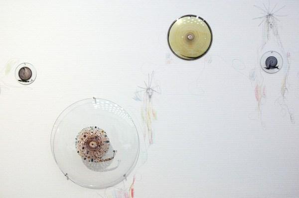 Marc Mulders - Hemelsblauw - 35 schalen en potlood op muur (detail)