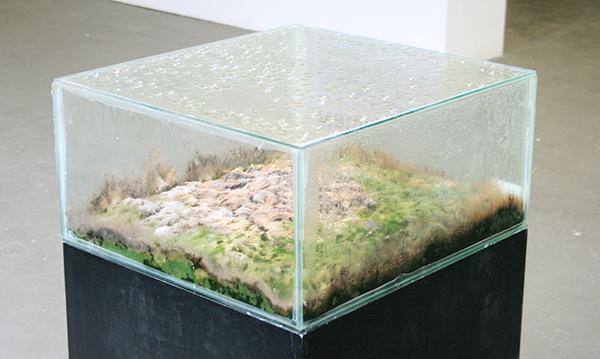 Martin uit den Bogaard - Schimmel-Landschap (Aarde van het graf van Marinus van der Lubbe)