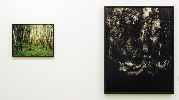 Misha de Ridder - Lost Cabin & Untitled - Foto