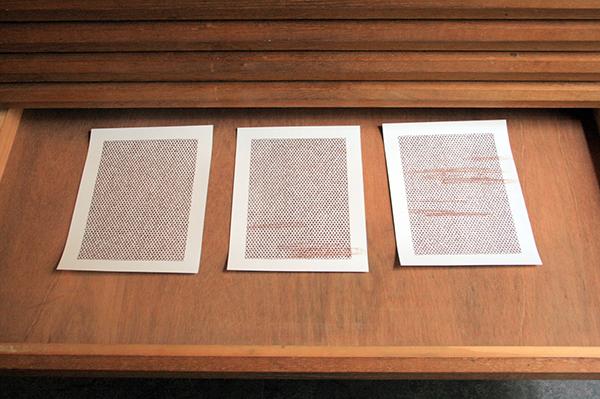 Mieke Fokkinga - Zwaluw - 30x40cm Contekrijt op papier