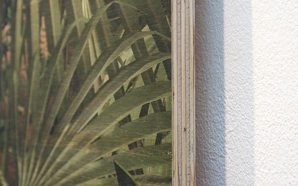 Persijn Broersen & Magrit Lukacs - Tropics (Les Zones Terrestres) small - 80x120cm, Print op multiplex (detail)
