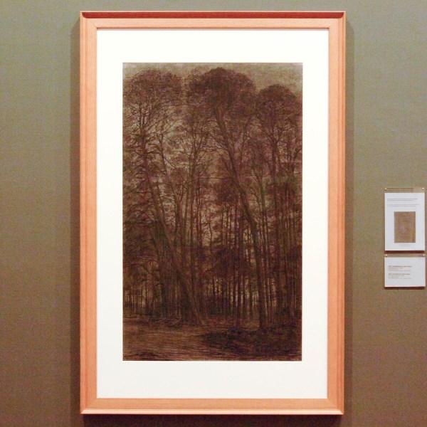 Piet Mondriaan - Dennebosch - Zwart krijt op papier 1906 (gebruikt voor compositie XIV)